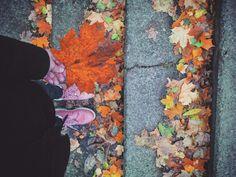 #favseason #novemberfalls #autumnlove#suceava.romania  ❤