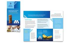 Brochure Template Word Contractor Trifold Brochure Template  Trifold Brochure  Pinterest .