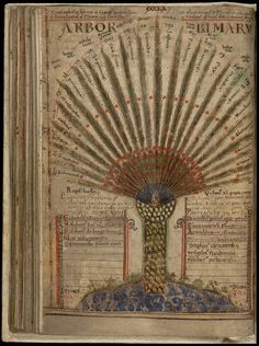 """Liber Floridus - Arbor PalmaruThese images come from the fabled manuscript, 'Liber Floridus' (Book of Flowers), a Medieval encyclopædia produced some 900 years ago by Lambert, Canon of St Omer, in the NE France/Flanders/Belgium region.  """"For Lambert the encyclopedia is a heavenly meadow where the """"flowers of literature"""" flourish together to attract faithful readers by their sweetness."""""""