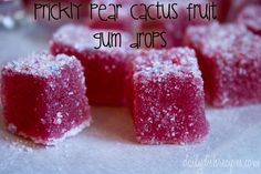 Cactus Fruit Prickly Pear Gum Drops by nicolehcook Prickly Pear Jelly, Prickly Pear Recipes, Prickly Cactus, Candy Recipes, Fruit Recipes, Just Desserts, Delicious Desserts, Yummy Food, Recipes