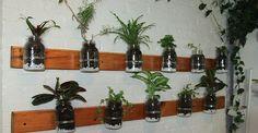 Come costruire un giardino con #barattoli di #vetro in 10 mosse