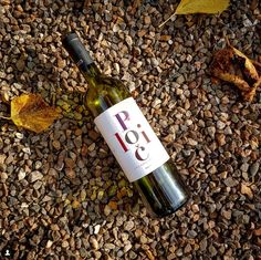 Polic. This organic wine from #Slovenia has a dark red cherry color. On the palate, there are strong currant, wild berry and plum flavors. Rich tannins although a harmonious taste and pronounced acidity.  winegram.it share your #wine