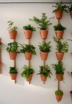 Oak plant #pot XPOT by Compagnie   #design Pascal Grossiord