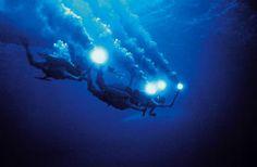 """le monde du silence est un film que Jacques-Yves Cousteau conçut et réalisa avec Louis Malle en 1956.  Le film commence avec  une voix-off récitant le texte suivant: """"A cinquante mètres de la surface, des hommes tournent un film. Munis de scaphandres autonomes à air comprimé, ils sont délivrés de la pesanteur. Ils évoluent librement.""""  Palme d'or de la 9e édition du Festival de Cannes (1956)."""