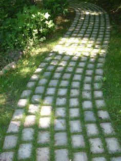 Love this as a path idea