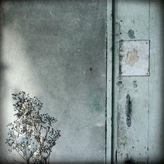 Fabienne Rivory - Photography & Painting - 2009 Saison grise