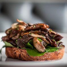 Mushrooms on Toast: Toasted Sourdough, Sauteed Wild Mushrooms & Watercress