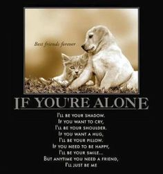 how true and heartwarming, big or small, cat, dog or your favorite animal, they're a part of your world but you are their entire world...
