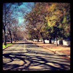 Instagram photo by @different335 via ink361.com Sidewalk, Country Roads, Instagram, Side Walkway, Sidewalks, Pavement, Walkways
