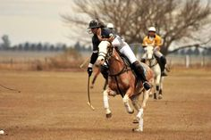 He played for the Cup tournament in Santa Fe Province in the Polo Club Roses