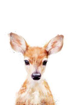 Little Deer - Amy Hamilton - Acrylglasbild