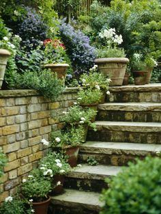 Stone steps & brick wall. Love the pots on the steps!