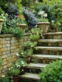 Garden Photos (484 of 765) - Lonny