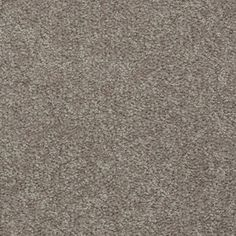 Shaw�7L41655792 Brown Textured Indoor Carpet Lowe's  http://www.lowes.com/pd_418977-373-7L41655792_1z110eb+2z8vh__?productId=3827763&Ns=p_product_price|0&pl=1&currentURL=%3FNs%3Dp_product_price%7C0%26page%3D1&facetInfo=Less%20Than%20$1