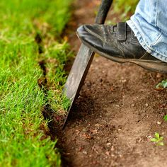 Edging a planting bed to slow grass spreading & keep mulch from washing away