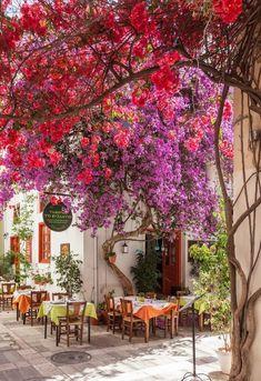 Speisen im Freien Beautiful Gardens, Beautiful Flowers, Beautiful Pictures, Beautiful Places To Travel, Wonderful Places, Travel Aesthetic, Greece Travel, Greek Islands, Wonders Of The World