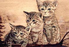kleine Wildkatzen