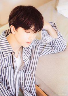 "Jisung Chile on Twitter: ""[Scan l 210227] #Jisung para el photobook de #NCTDREAM ""Dream a Dream"". Cr. zhichengo2o5 [Jisung Chile] 🦕… "" Paros, Andy Park, Johnny Seo, Park Jisung Nct, Park Ji Sung, Fandom, Jaehyun Nct, Na Jaemin, Baby Bunnies"