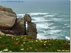 Praia da Amoeira Water, Outdoor, Santa Cruz, The Beach, Gripe Water, Outdoors, Outdoor Games, The Great Outdoors