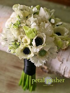 Favorite bridal bouquet White anemone bouquet, too monochrome in color though. White Anemone, White Peonies, White Roses, White Flowers, Beautiful Flowers, Floral Bouquets, Wedding Bouquets, White Bouquets, White Wedding Flowers