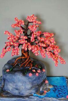 Bonsai Cherry Blossom trees