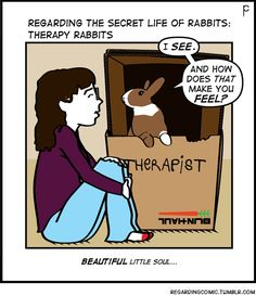 Guest therapy rabbit, Daria, helped with this one!(A special thanks to Bunny Slave Rachel)