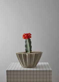 Concrete Succulent/Cacti Plant Pot by geofleur on Etsy Concrete Plant Pots, Cactus Plant Pots, Cacti And Succulents, Potted Plants, Terrarium Workshop, Succulent Display, Macrame Plant Hangers, Houseplants, Flower Pots