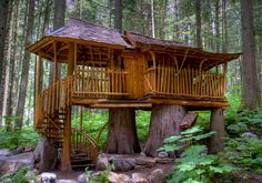 reminds me of the old Tarzan and Jane treehouse with Johnny Weismuller. Just not as high