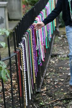 Now I know what to do with all those leftover Mardi Gras beads! I wonder if they would keep the birds out of the garden.