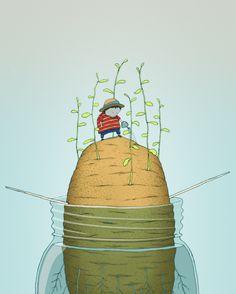 Illustrations by Jesse Kuhn