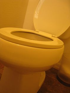 Clean the toilet...without toxins!  Toilet Bowl Cleaner  -3/4 cup baking soda  -3/4 cup white vinegar  -10 drops of tea tree oil  -10 drops of lavender essential oils  Directions: Combine baking soda and essential oils in a mixing bowl. When ready to clean toilet bowl add vinegar and pour mixture into the toilet. Then scrub with toilet brush.   Link has second recipe for more stubborn stains.