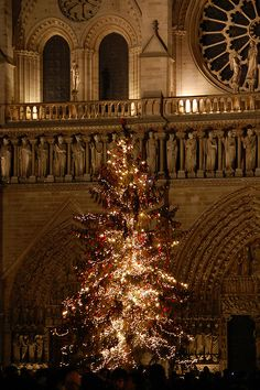 Christmas tree in front of Notre Dame, Paris- It would definitely be cool to see Paris at Christmas time (especially with snow)
