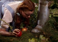 """Dorothy finds The Tin Man while gathering apples that were thrown at her by the """"trees"""""""