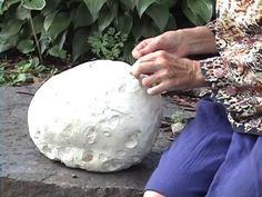 ▶ Edible Fungi: Giant Puffball -  Very good video on safely harvesting and eating these  wonderful giant mushrooms, Tells many ways to prepare them.