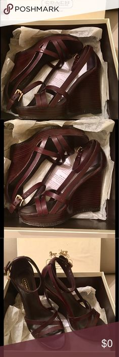 Coach Wedges Coach Chestnut Veg Wedge Heels 👡👡Women's Size 51/2 Medium 👡comes with original box 🎉🎉Preowned! 👡👡👡🎉🎉 Coach Shoes Wedges
