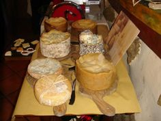 different kinds of italian cheese .. pecorino, gorgonzola, parmesan … in Bolgheri (Tuscany). http://www.castagnetoedintorni.it/ristorazione/osteriamagona/osteria-magona.html