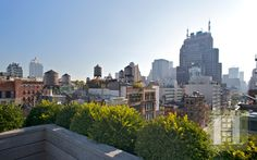 Roof-top terrace, NYC