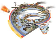 timeline of earth - Google Search