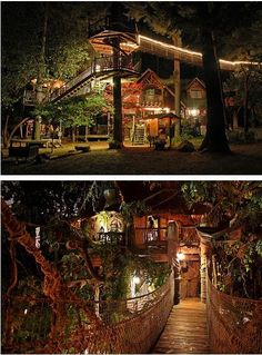 Once Again, Photo Of That Phenomenal Tree House
