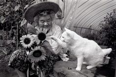 Many years ago the photographer Mioko Ihara started taking pictures of his grandmother's Misao and her Fukumaru cat's life moments. Fukumaru was a cat with heterochromia.