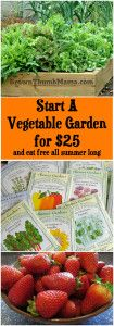 Start a Vegetable Garden for $25: BrownThumbMama.com