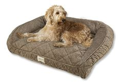 Just found this Memory Foam Dog Beds - Deep Dish Dog Bed with Memory Foam -- Orvis on Orvis.com!