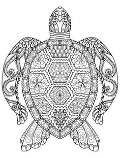 sea turtle coloring page for adults for free download Davlin Publishing #adultcoloring  Davlin Publishing #adultcoloring
