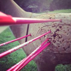 Shoot like a girl. Not me shooting but liked the pink arrows