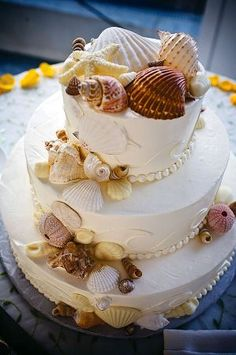 seashell cake- looks so much like the one we had the day after our wedding, for my mom's surprise birthday brunch :)