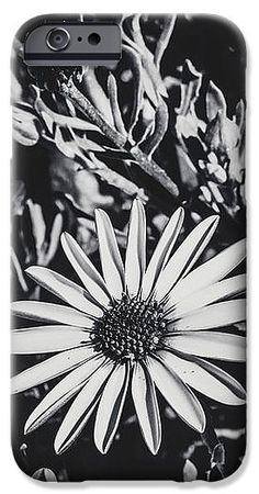 Flower IPhone 6s Case featuring the photograph Precious by Loredana Isac