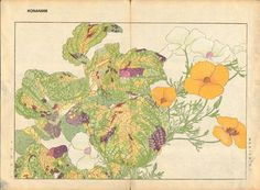 Artist: Tanagami, Konan  Title: California Poppy and Colius  Date: 1918