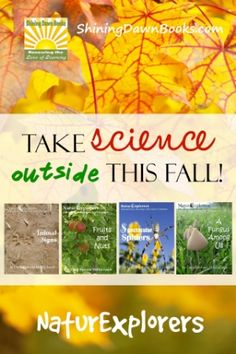 NaturExplorers studies make science come alive with in-depth lessons on more than 20 nature topics. Whether you're hoping for creative nature walk ideas or full-blown science unit studies, NaturExplorers fit the bill. There are several topics perfect for autumn!