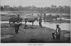 Image ID: 1258543  Pitch Lake, Trinidad (1899)