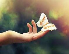 Ame, viva, sonhe.: Ame, viva, sonhe... Redes sociais.